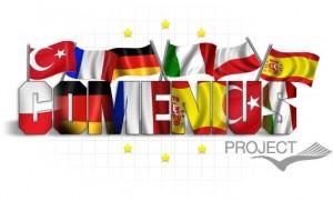 Bitte klicken Sie zur offiziellen Comenius-Homepage