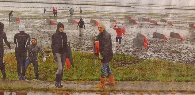 Landart im Wattenmeer